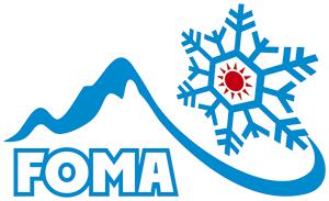 логотип-снежинка